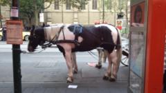 さとうゆみ 公式ブログ/牛柄の馬 画像2