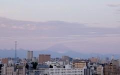 さとうゆみ 公式ブログ/出た! 画像1