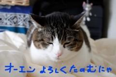 さとうゆみ 公式ブログ/中一日〜今回のネイル〜 画像3