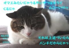 さとうゆみ 公式ブログ/クイズ2の答え〜こわがりみーくん〜 画像2