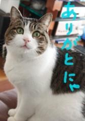 さとうゆみ 公式ブログ/ギアチェンジ 画像3