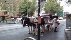 さとうゆみ 公式ブログ/牛柄の馬 画像1