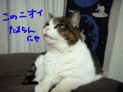 さとうゆみ 公式ブログ/みーくんおでんクイズ 画像3