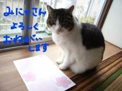 さとうゆみ 公式ブログ/桜プロジェクト 画像3