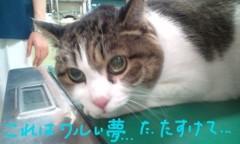 さとうゆみ 公式ブログ/みーくん受診 画像1