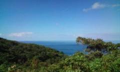 さとうゆみ 公式ブログ/天気よし、海よし、イルカ好し! 画像1