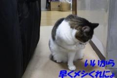 さとうゆみ 公式ブログ/帰宅 画像3