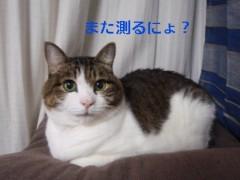 さとうゆみ 公式ブログ/茨城 前編 画像1