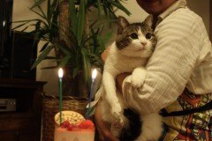 さとうゆみ 公式ブログ/みーくんのお誕生日 画像1