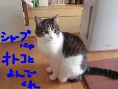 さとうゆみ 公式ブログ/ビッグキャット 画像3