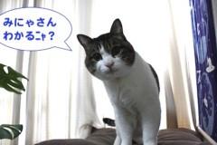 さとうゆみ 公式ブログ/出願!と、みーくんクイズ 画像3