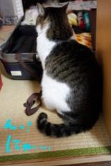 さとうゆみ 公式ブログ/明日から前橋 画像1