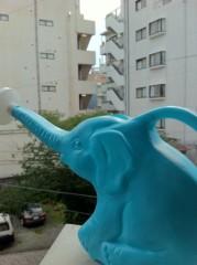 Kanna 公式ブログ/象。 画像1