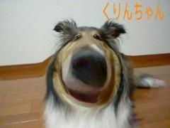 秋山那留実 公式ブログ/おはようございます 画像1