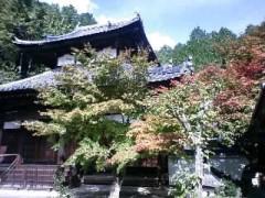 関口愛美/ライブフローリスト愛眠 公式ブログ/そうだ、京都へ行こう。 画像1