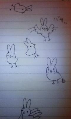 色々ひよこウサギ
