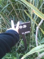 阿川祐未 公式ブログ/昔飼ってた亀の名前はパクパクでした。 画像2