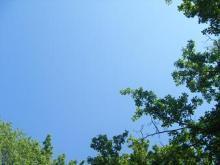 西岡麻生 公式ブログ/ぴくにっく 画像1