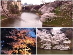 丸岡真由子 公式ブログ/大相撲も撮影も無事おわり。。どす 画像3