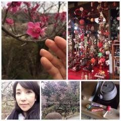 丸岡真由子 公式ブログ/2月の花といえば。。どす 画像3