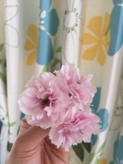 丸岡真由子 公式ブログ/八重の桜の季節どす 画像3
