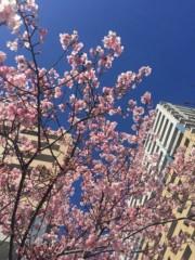 丸岡真由子 公式ブログ/今日はバレンタインどす 画像2