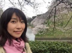 丸岡真由子 公式ブログ/千鳥ヶ淵どす 画像3