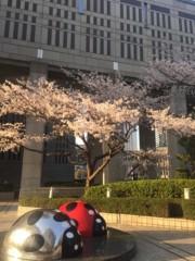 丸岡真由子 公式ブログ/すばらしい日々どす 画像3