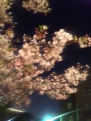 EIKO 公式ブログ/花見 画像1
