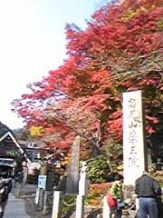 伊藤真奈美(アズライト) 公式ブログ/高尾山の紅葉 画像1