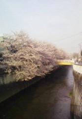 快信孝(チックタックブーン) 公式ブログ/和む風景 画像1