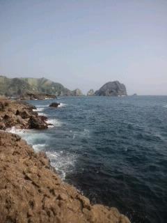 南伊豆の海