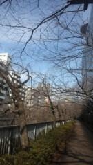 甘糟記子 公式ブログ/ウォーキング 画像1