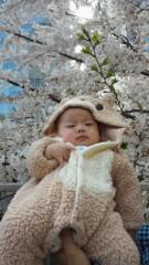 甘糟記子 公式ブログ/花見 画像1