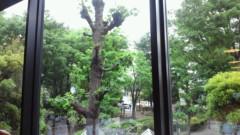 甘糟記子 公式ブログ/雨 画像1