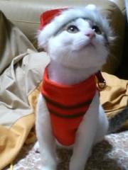 あずまみな 公式ブログ/メリークリスマス 画像1