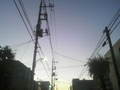 芝崎昇 公式ブログ/ウスアオムラサキ? 画像1
