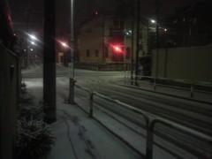 芝崎昇 公式ブログ/雪… 画像1