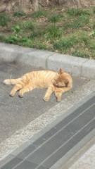 芝崎昇 公式ブログ/ラジオから 画像2