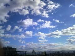 芝崎昇 公式ブログ/今朝の 画像1