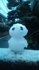 白 公式ブログ/雪のだるま君…2011 画像1