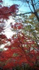 白 公式ブログ/真っ赤 画像1