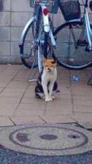 田中稔 公式ブログ/幸せ×間違い 画像3