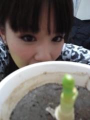 綾乃(かぐや) 公式ブログ/生命力(かぐや:よう子) 画像1