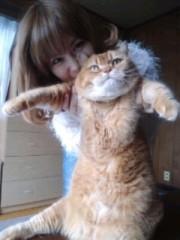綾乃(かぐや) 公式ブログ/我が家のデブねこ( よう子) 画像3