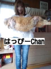 綾乃(かぐや) 公式ブログ/我が家のデブねこ( よう子) 画像2