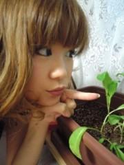 綾乃(かぐや) 公式ブログ/たいふ〜ん( よう子) 画像1