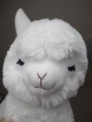 綾乃(かぐや) 公式ブログ/英語からきてる( かぐや:よう子) 画像1