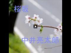 ryotaronakai_sakurazaka_sa