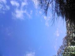 the ARROWS 公式ブログ/今日も青空 画像1